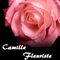 Camille Fleuriste - Promotions & Rabais pour Fleuristes